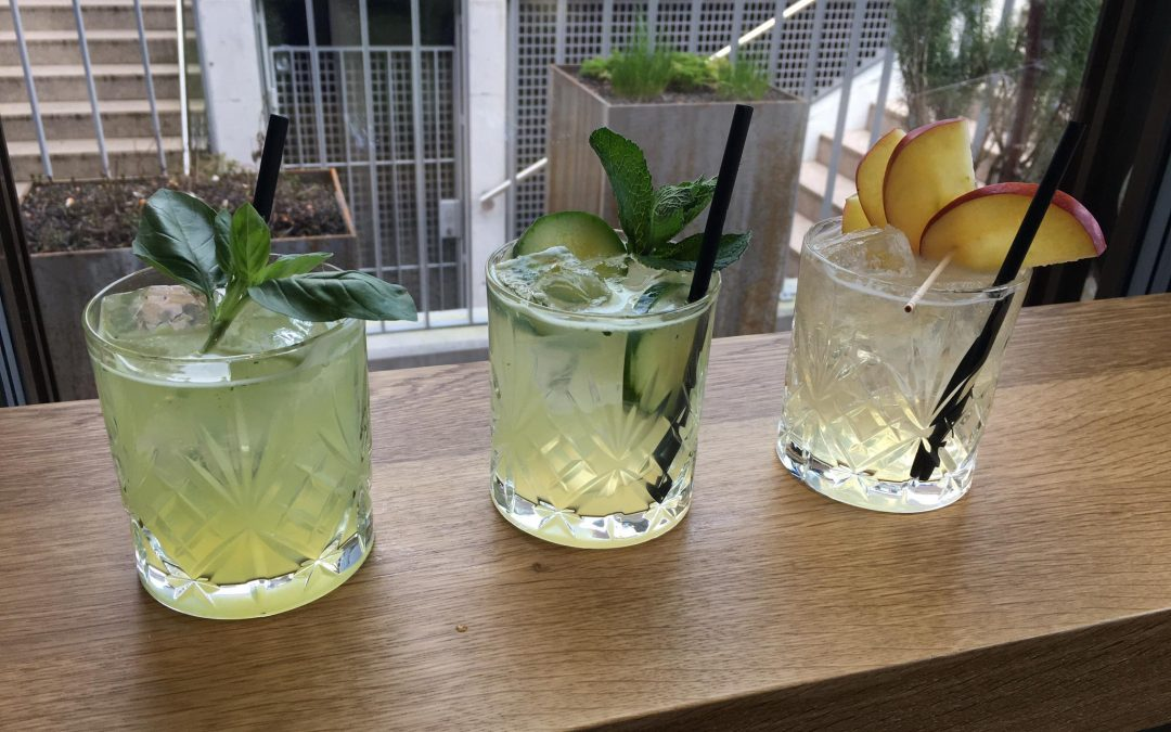 Monatsdrink März und April 2020: GIN SMOOTHIES